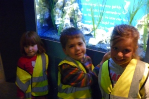 This is some of us inside the Aquarium. Things we liked best were the sharks and the giant turtle.