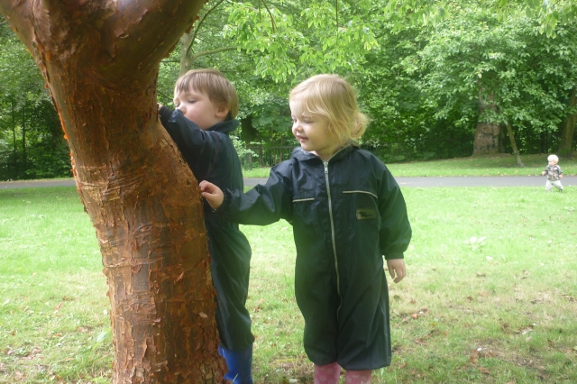 Tom and Layla like touching trees in the Botanic Gardens