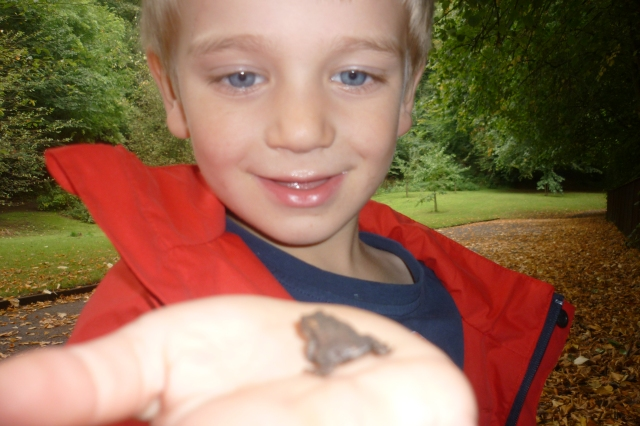 We were out last Friday looking for bugs and we found this baby frog beside the pigeon bridge. We took him back to nursery for a few hours then let him go back to his home. We are learning to respect nature.