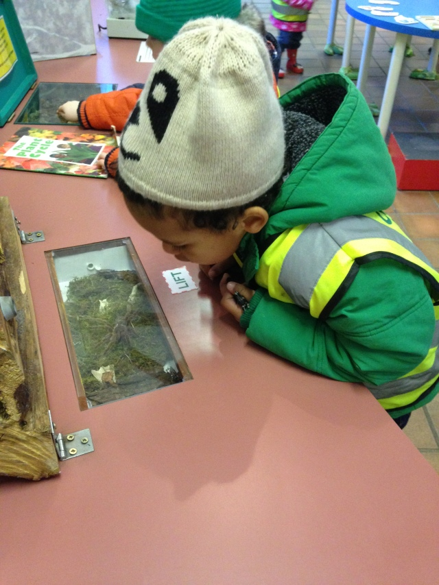 The visitors centre at Tollcross Farm is fantastic  with loads of things for children to explore.
