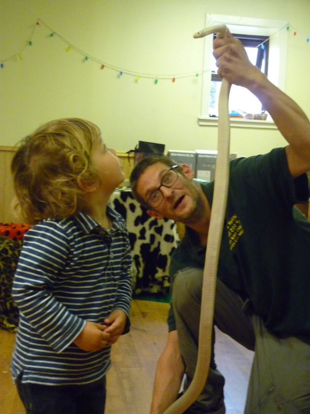 The Animal Man came to nursery last week and brought his mini zoo. This is him teaching the children about corn snakes and holding the snake this way so they could see how long it was!! Great fun. We are learning to develop respect and care for nature and small creatures.